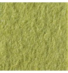 AQF015370 - Pistachio